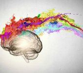 El marketing sensorial para mejorar tus campañas