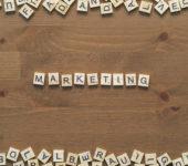 Escurçó 2.0: el SEO y el marketing de contenido como mejor estrategia en la web